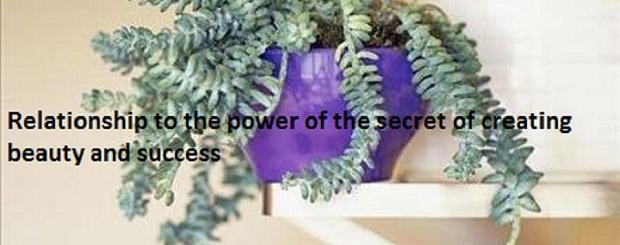 ارتباط با قدرت درون راز خلق زیبایی و موفقیت